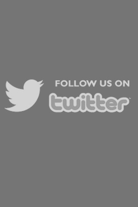 Follow us on Twitter for all the latest news and views from EscortsMania.com